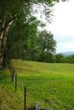 Paesaggio della valle della montagna, Australia Immagini Stock