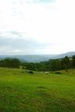 Paesaggio della valle della montagna, Australia Fotografia Stock