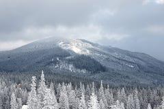Paesaggio della valle della montagna di inverno Immagini Stock