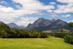 Paesaggio della valle della vigna del Sudafrica Immagini Stock Libere da Diritti