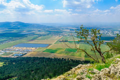 Paesaggio della valle di Jezreel, osservato dal precipizio del supporto Immagine Stock Libera da Diritti