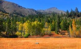Paesaggio della valle di speranza Fotografia Stock