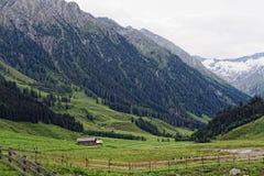 Paesaggio della valle di Zillertal in Tirolo Alpi europee Austria dentro Immagine Stock Libera da Diritti