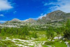Paesaggio della valle verde della montagna delle alpi Fotografia Stock Libera da Diritti