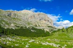 Paesaggio della valle verde della montagna delle alpi Fotografia Stock