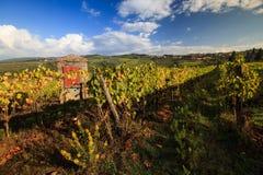 Paesaggio della vigna in autunno con il pozzo artesiano tipico Immagini Stock Libere da Diritti