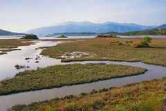 Paesaggio della zona umida, palude d'acqua salata Vista della riserva naturale speciale Solila, Teodo, Montenegro, autunno immagini stock libere da diritti