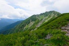 Paesaggio delle alpi del sud del Giappone Fotografia Stock
