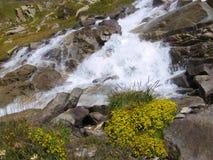 Paesaggio delle alpi del Tarentaise Fotografie Stock Libere da Diritti