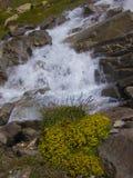 Paesaggio delle alpi del Tarentaise Fotografia Stock Libera da Diritti