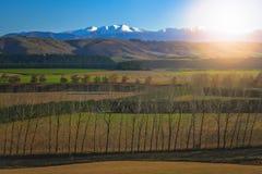 Paesaggio delle alpi della Nuova Zelanda Fotografia Stock Libera da Diritti