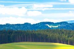 Paesaggio delle alpi di estate Immagine Stock