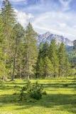Paesaggio delle alpi di Karwendel Fotografia Stock