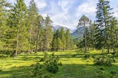 Paesaggio delle alpi di Karwendel Fotografia Stock Libera da Diritti