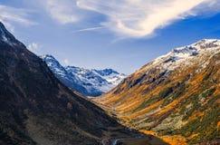 Paesaggio delle alpi e della foresta svizzere del parco nazionale in Svizzera Alpi della Svizzera sull'autunno Parc Naziunal Sviz Immagine Stock