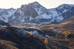 Paesaggio delle alpi e della foresta svizzere del parco nazionale in Svizzera Alpi della Svizzera sull'autunno Strada del passagg Immagine Stock