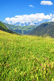 Paesaggio delle alpi francesi Fotografia Stock Libera da Diritti