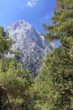 Paesaggio delle alte montagne Immagine Stock