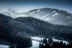 Paesaggio delle alte montagne coperte di foresta nevosa alla sera Immagine Stock