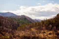 Paesaggio delle alte montagne del Altai Immagini Stock Libere da Diritti