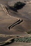 Paesaggio delle colline dell'Andalusia Fotografia Stock Libera da Diritti