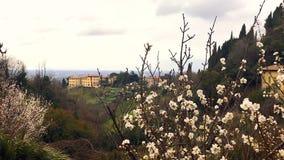 Paesaggio delle colline italiane da un villaggio in Italia con un primo piano del ciliegio sopra stock footage