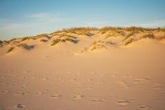 Paesaggio delle dune e di orme Fotografia Stock Libera da Diritti