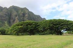 Paesaggio delle Hawai nel giorno nuvoloso Immagini Stock Libere da Diritti