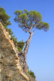 Paesaggio delle montagne Immagini Stock Libere da Diritti