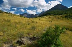 Paesaggio delle montagne Immagine Stock