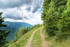 Paesaggio delle montagne Fotografia Stock