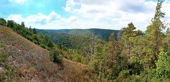 Paesaggio delle montagne boscose e del fiume Immagini Stock