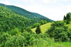 Paesaggio delle montagne carpatiche Immagini Stock