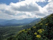 paesaggio delle montagne carpatiche, alba sulla montagna Fotografie Stock Libere da Diritti