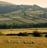 Paesaggio delle montagne delle colline della campagna di paesaggio Fotografia Stock