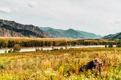 Paesaggio delle montagne di Altai e del fiume di Katun Immagini Stock