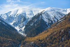 Paesaggio delle montagne di Altai Repubblica di Altai Fotografie Stock Libere da Diritti