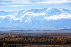 Paesaggio delle montagne di Altai Repubblica di Altai Immagini Stock