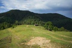 Paesaggio delle montagne di Carpathians Fotografia Stock