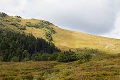 Paesaggio delle montagne di estate Fotografia Stock