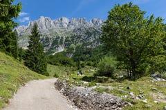 Paesaggio delle montagne di estate Facendo un'escursione nelle alpi, montagne di Kaiser, Austria, Tirolo Fotografia Stock