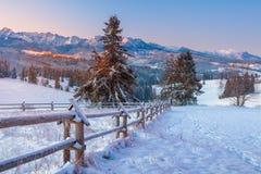 Paesaggio delle montagne di inverno fotografia stock