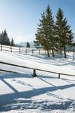Paesaggio delle montagne di Snowy Fotografia Stock