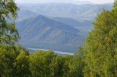 paesaggio delle montagne nella caduta fra gli alberi Immagine Stock