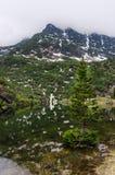 Paesaggio delle montagne riflesse nell'acqua Fotografie Stock Libere da Diritti