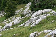 Paesaggio delle rocce del pendio di montagna Fotografia Stock