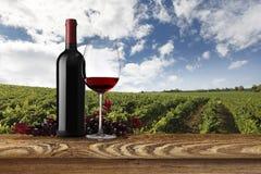 Paesaggio delle vigne con la bottiglia, il bicchiere di vino e l'uva Fotografia Stock