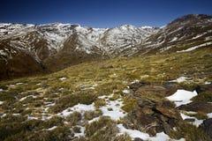 Paesaggio dello Snowy Immagine Stock Libera da Diritti