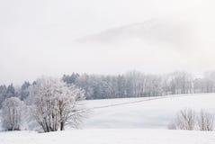 Paesaggio dello Snowy fotografia stock