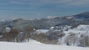 Paesaggio dello Snowy con lo stabilimento di legno della casa Fotografie Stock Libere da Diritti
